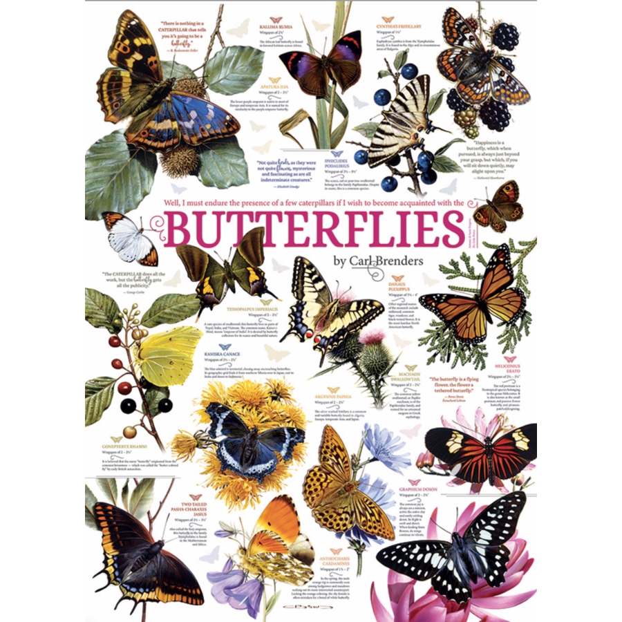 Butterfly Quotes - 1000 pieces-1
