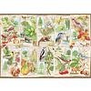 Ravensburger Wondrous Trees - puzzle of 1000 pieces