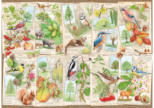 Wondrous Trees - 1000 pieces