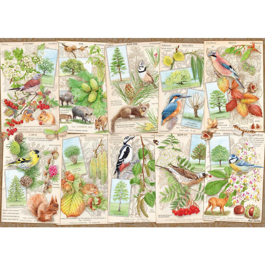 Les arbres merveilleux - puzzle de 1000 pièces-1