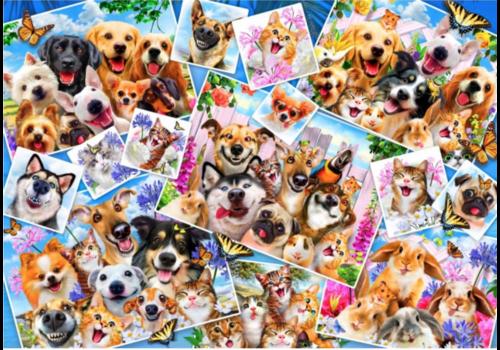 Bluebird Puzzle Selfie-collage van dieren - 1000 stukjes