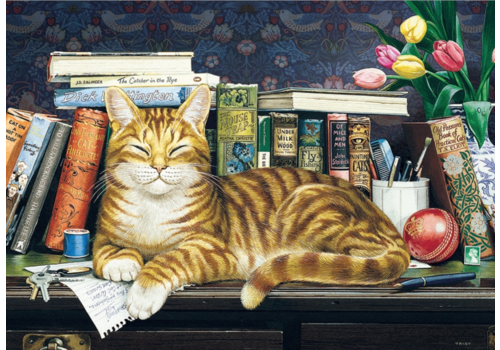 Kat tussen de boeken - 35 stukjes