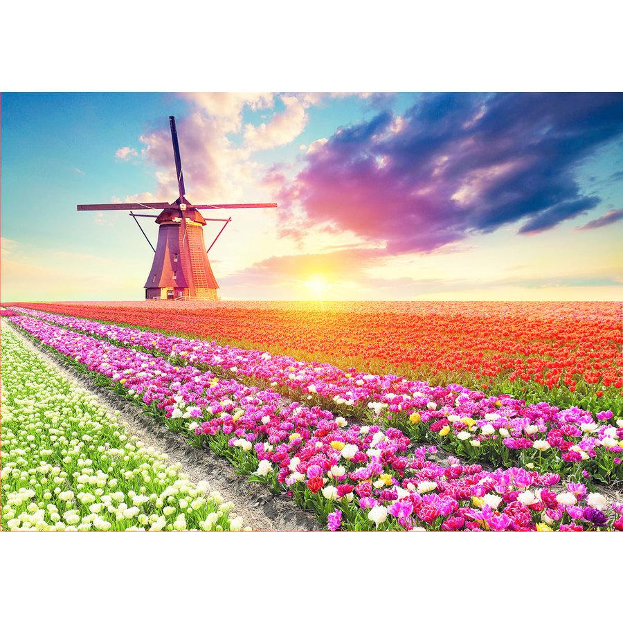 Tulpenlandschap- legpuzzel van 1500 stukjes-2
