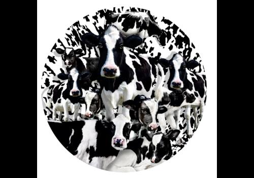 Herd of Cows - 1000 pieces