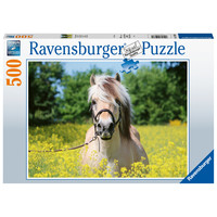 thumb-Horse among the flowers - jigsaw puzzle of 500 pieces-2