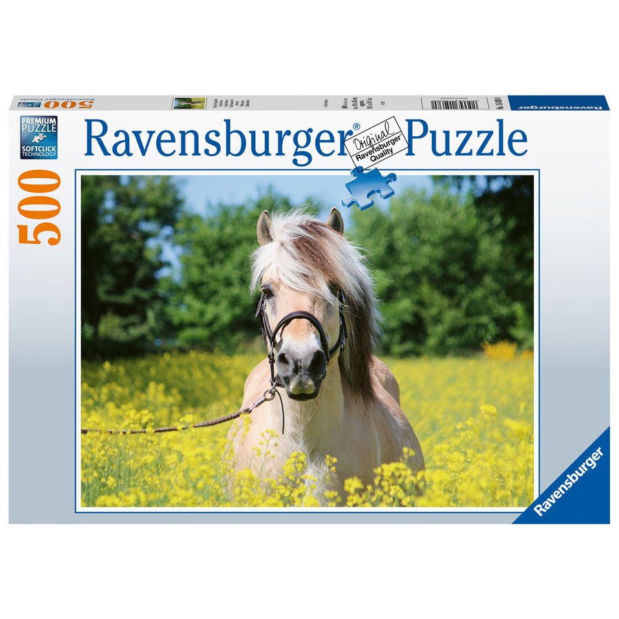 Horse among the flowers - jigsaw puzzle of 500 pieces-2