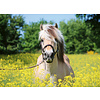 Ravensburger Horse among the flowers - jigsaw puzzle of 500 pieces