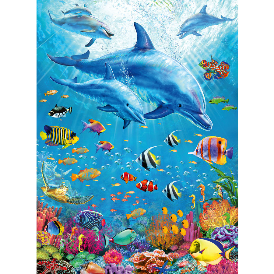 Dolphin Encounter - puzzle of 100 pieces-1