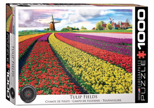 Tulip Field - 1000 pieces