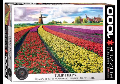 Eurographics Puzzles Veld vol tulpen  - 1000 stukjes