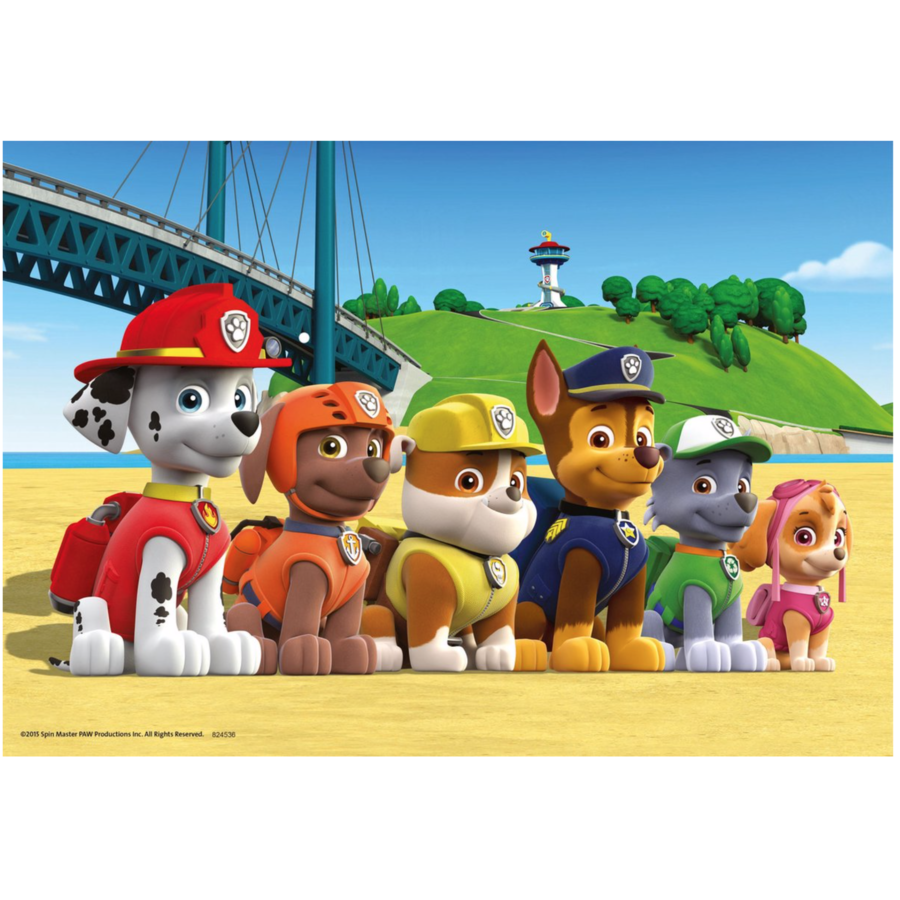 Paw Patrol - 2 puzzles of 24 pieces-3