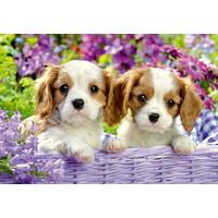 thumb-Les chiens dans le panier - 2 puzzles de 24 pièces-2