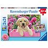 Ravensburger Les chiens dans le panier - 2 puzzles de 24 pièces