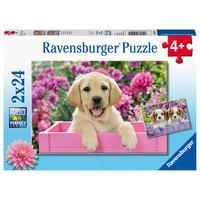 thumb-Hondjes in de mand - 2 puzzels van 24 stukjes-1