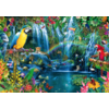 Bluebird Puzzle Tropiques des perroquets - puzzle de 1000 pièces