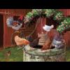 Cobble Hill De kippen doen het goed - puzzel van 275 XXL stukjes