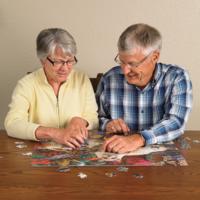 thumb-Bedekte brug - puzzel van 275 XXL stukjes-2