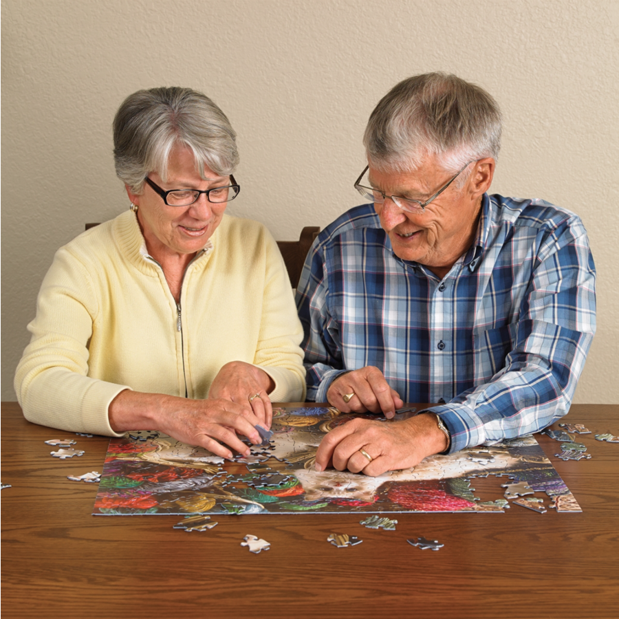 Bedekte brug - puzzel van 275 XXL stukjes-2