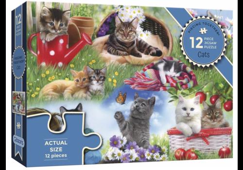 Katten - 12 XXL stukjes