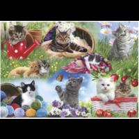 thumb-Katten  - puzzel van 12 XXL stukjes-2