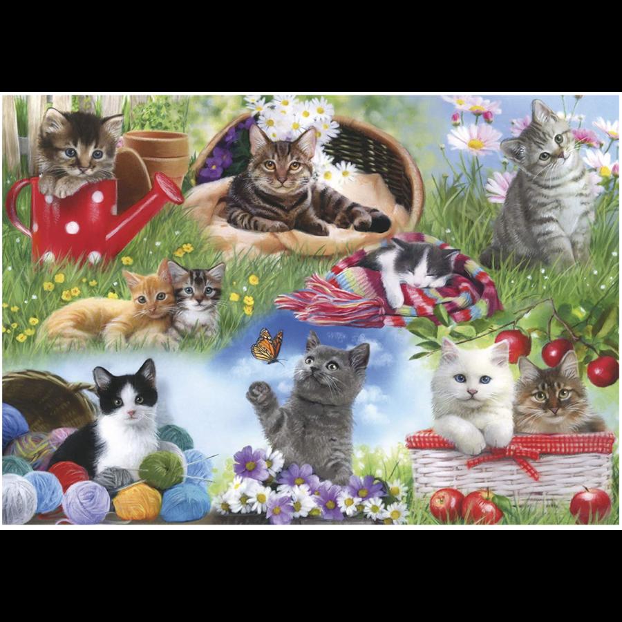 Katten  - puzzel van 12 XXL stukjes-2
