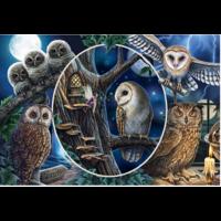 thumb-Mysterieuze uilen - 1000 stukjes-1