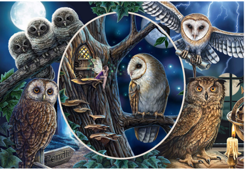 Mysterious owls - 1000 pieces