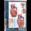 Eurographics Puzzles Het hart - puzzel van 1000 stukjes