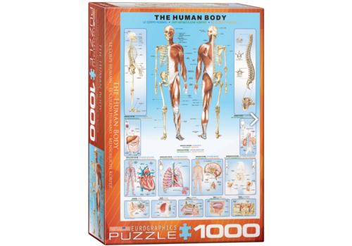 The human body - 1000 pieces