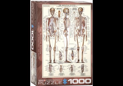 Eurographics Puzzles Het skeletsysteem  - 1000 stukjes