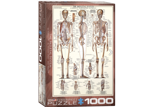 The skeletal system - 1000 pieces