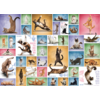 Eurographics Puzzles Yoga Cats - Collage - 1000 pieces - jigsaw puzzle