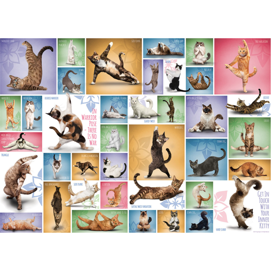 Yoga Cats - Collage - 1000 pieces - jigsaw puzzle-1