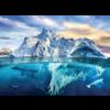 Eurographics Puzzles De Noordpool - puzzel van 1000 stukjes