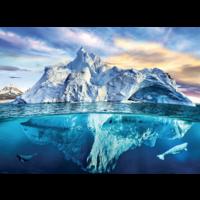 thumb-De Noordpool - puzzel van 1000 stukjes-1