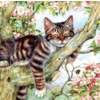 SUNSOUT De slapende kat - legpuzzel van 500 stukjes