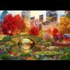 Bluebird Puzzle Central Park à New York- puzzle de 1000 pièces