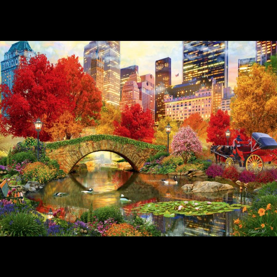 Central Park à New York- puzzle de 1000 pièces-1