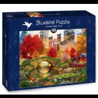 thumb-Central Park à New York- puzzle de 1000 pièces-2