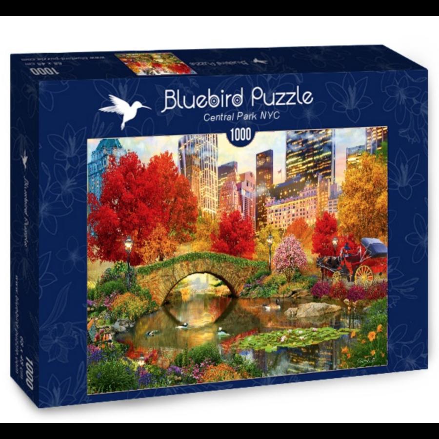 Central Park à New York- puzzle de 1000 pièces-2