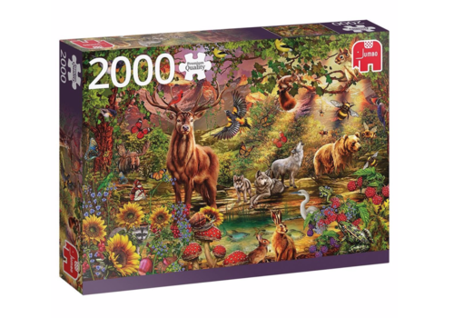 Magic forest at Sunset - 2000 pieces