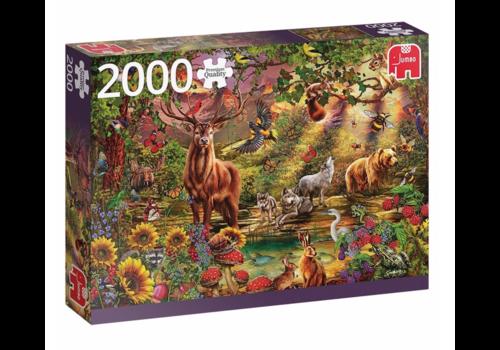 Jumbo Magisch bos bij zonsondergang - 2000 stukjes