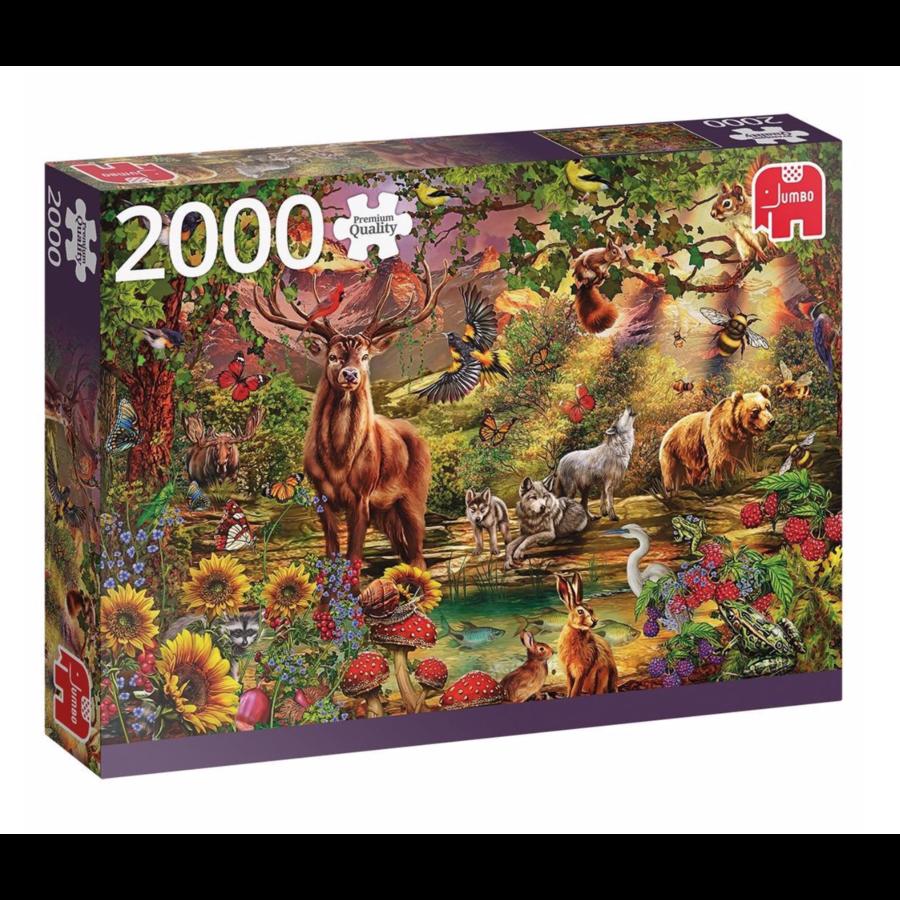 La forêt magique au coucher du soleil - puzzle de 2000 pièces-1