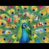 Ravensburger Land van de pauw - puzzel van 2000 stukjes