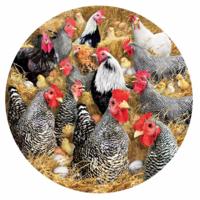 Kippen en kuikens - legpuzzel van 1000 stukjes