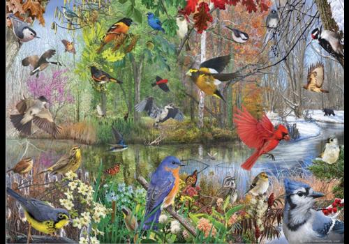 Cobble Hill Vogels van het seizoen - 1000 stukjes