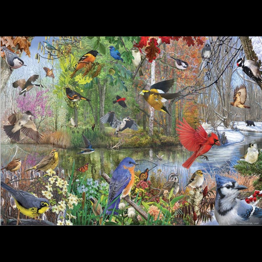 Vogels van het seizoen - puzzel van 1000 stukjes-1