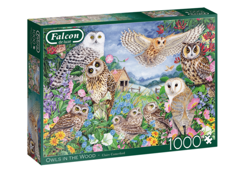 Falcon Owls in the Wood - 1000 pieces