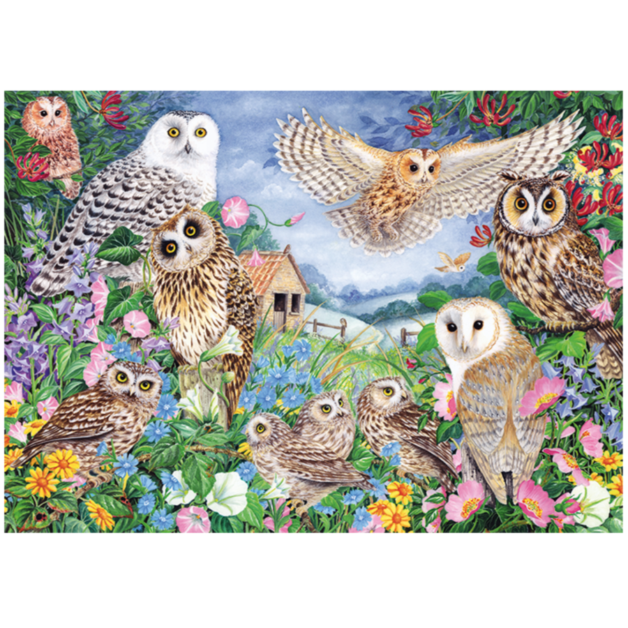 Owls in the Wood - puzzle of 1000 pieces-2
