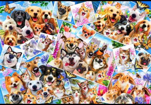 Bluebird Puzzle Collage van dieren selfies - 260 stukjes